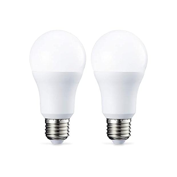 Bombillas LED 10w