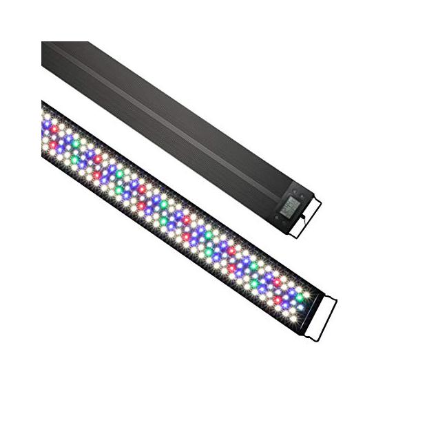Bombillas LED para acuarios plantados
