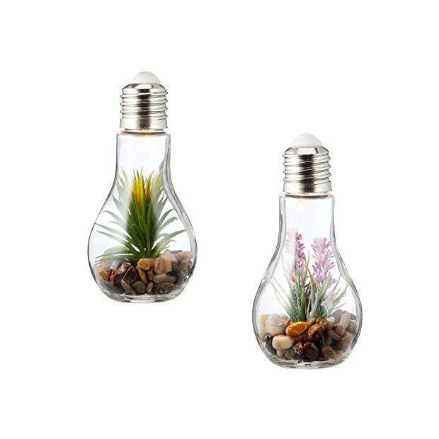 Bombillas decorativas con plantas