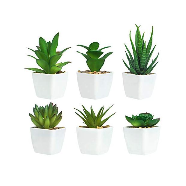 Plantas artificiales bonitas