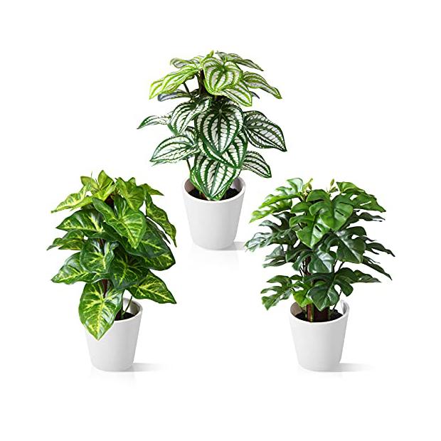 Plantas artificiales con maceta