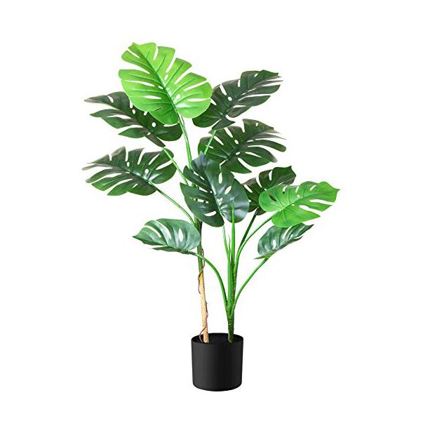 Plantas artificiales de oficina