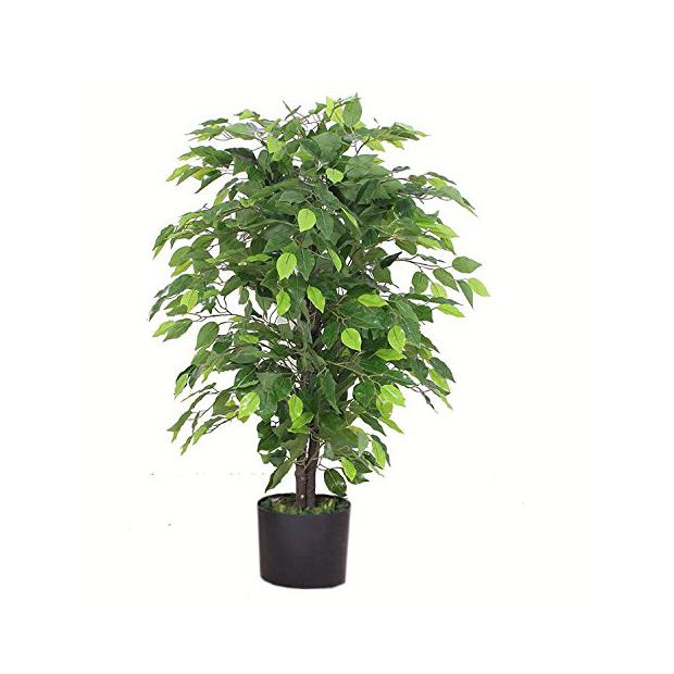 Plantas artificiales ficus