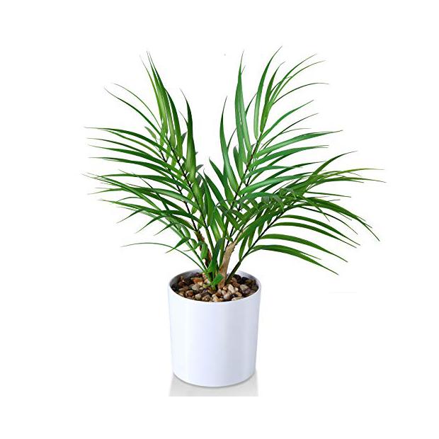 Plantas artificiales modernas