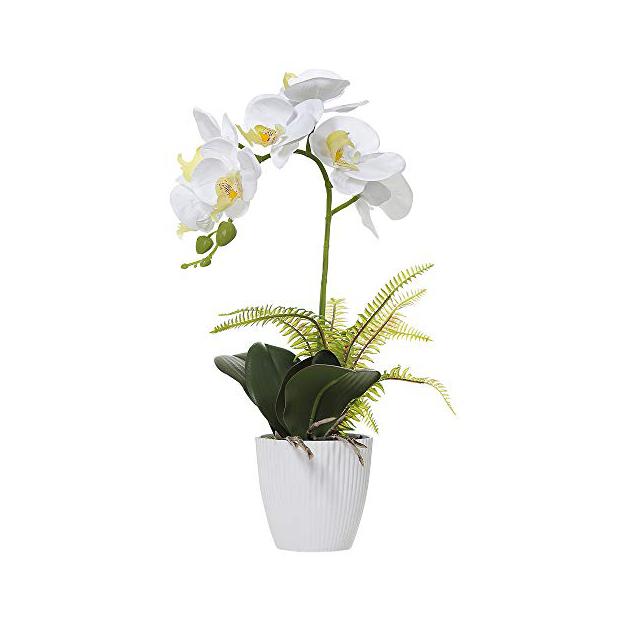 Plantas artificiales orquidea