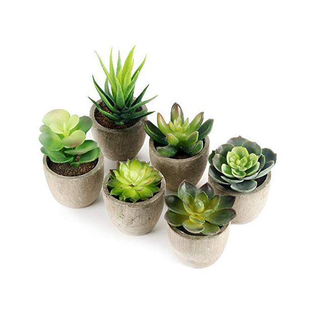 Plantas artificiales pequeñas