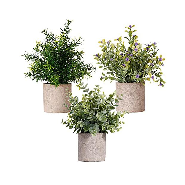 Plantas artificiales reales